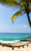 Shutterstock_95647150